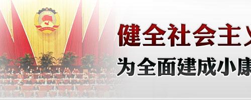论中国特色社会主义民主政治建设