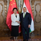 Chinese vice premier meets with Hungarian PM Orban
