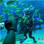 """人民日报:碧海银滩也是""""绿水青山"""""""