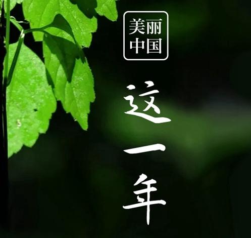 """美丽中国""""这一年"""""""