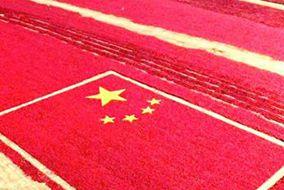 新时代中国特色社会主义的战略目标