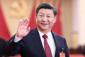 学懂习近平新时代中国特色社会主义思想