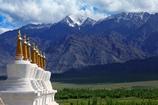 参加西藏代表团审议