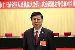 王晋代表:回应人民期待,守护湖北绿色创新发展