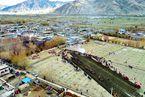 阔步迈进西藏发展的新时代