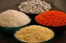 提升农业全要素生产率