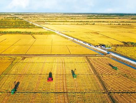 坚持农业农村优先发展 大力实施乡村振兴战略