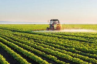 扎牢耕地保护的制度篱笆